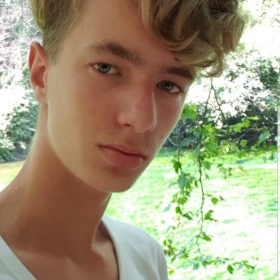 Devin zoekt een Appartement / Huurwoning / Kamer / Studio in Haarlem
